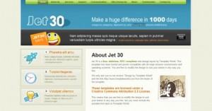 Jet 30