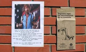 Chuck Norris en Sevilla